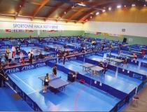 Sportovní hala VUT Brno